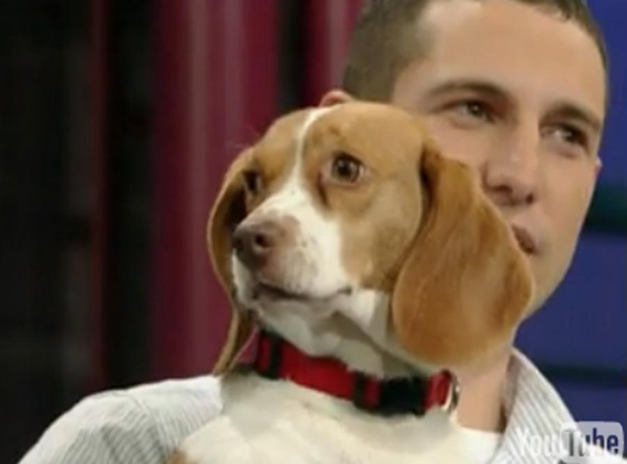 Zobacz psa, który ma prawdziwy talent