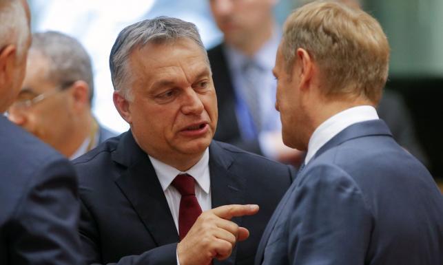 Dominik Héjj: Prorządowe media piszą o putinofobii Tuska. Jego krytyka wobec Orbána została zauważona [OPINIA]