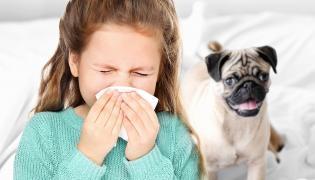Dziewczynka kicha i pies