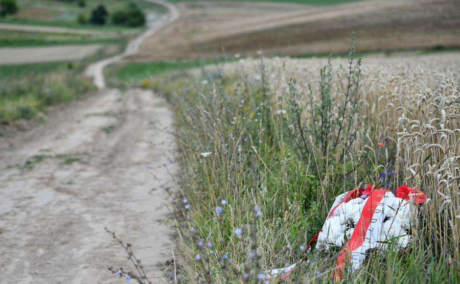 Kwiaty w miejscu nieistniejącej już wsi na Wołyniu