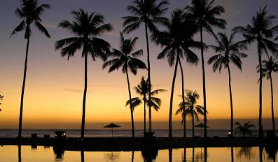 Egzotyczne wakacje na koszt podatników