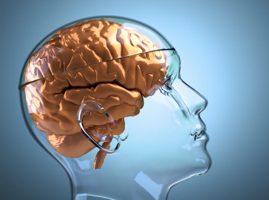 Niewyspany mózg łatwiej wpada w amok