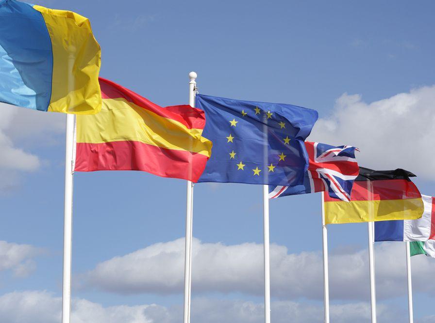 Wiceszefowa Parlamentu Europejskiego oskarżana o plagiat
