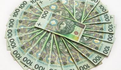 Balcerowicz krytykuje Belkę: Na interwencjach tracimy dewizy