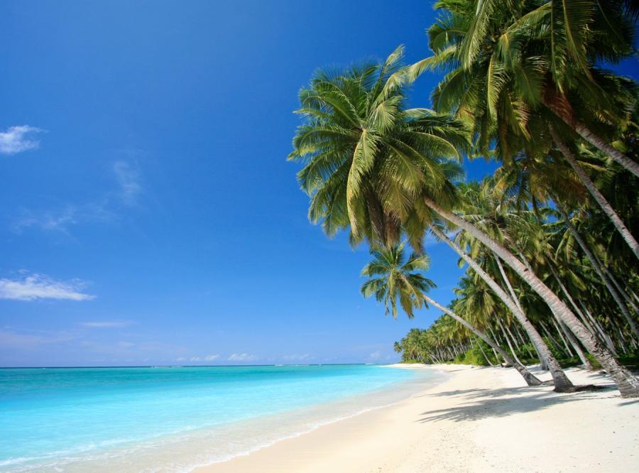 Ekskluzywne wakacje można mieć za pół darmo
