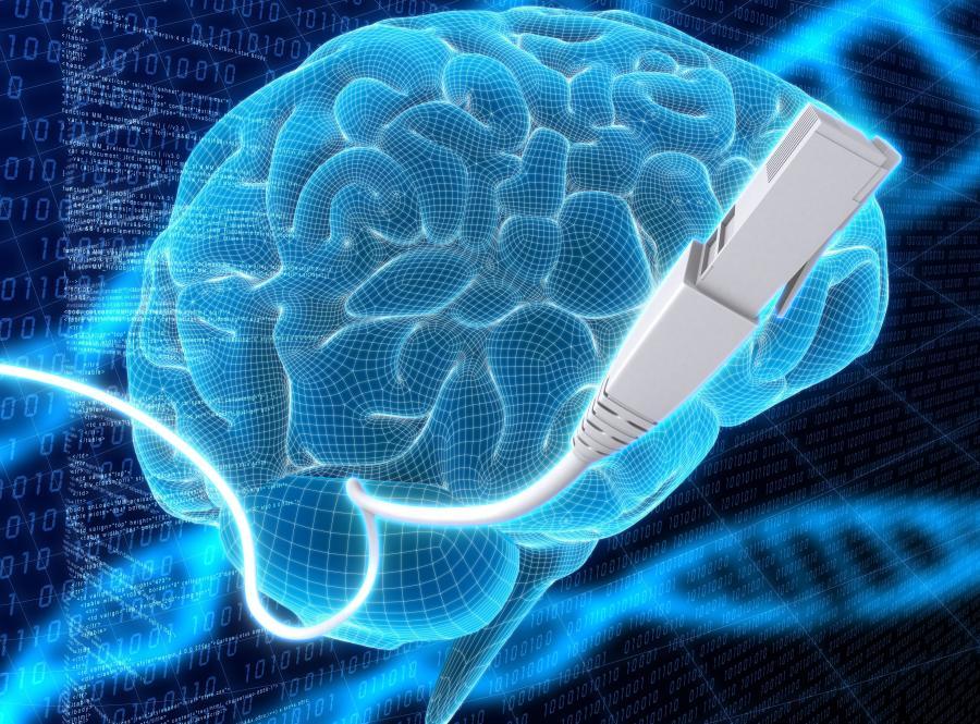 Możliwości mózgu osiągnęły szczyt