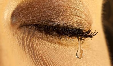 Sensacja! Komórki macierzyste przywracają wzrok
