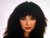 Kate Bush (1980)