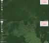 Lasy Amazonii, Brazylia