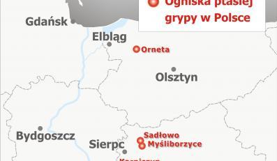 Ogniska ptasiej grypy w Polsce