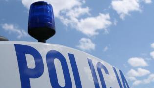 Policyjny kogut, zdjęcie ilustracyjne