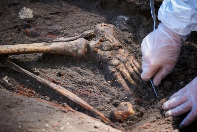 GDAŃSK, CMENTARZ GARNIZONOWY. Archeolodzy IPN odkrywają szczątki ofiar z 1946 roku