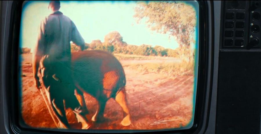 Damon Albarn i Mr Tembo...