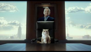"""""""Jak zostać kotem"""" – nowa produkcja autora """"Facetów w czerni"""" i """"Rodziny Addamsów"""""""