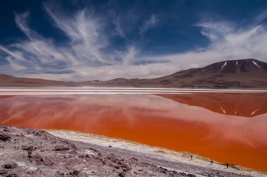 Laguna Colorada, Park Avaroa, Boliwia; fot. T. Bogusz / Pirania na kolację